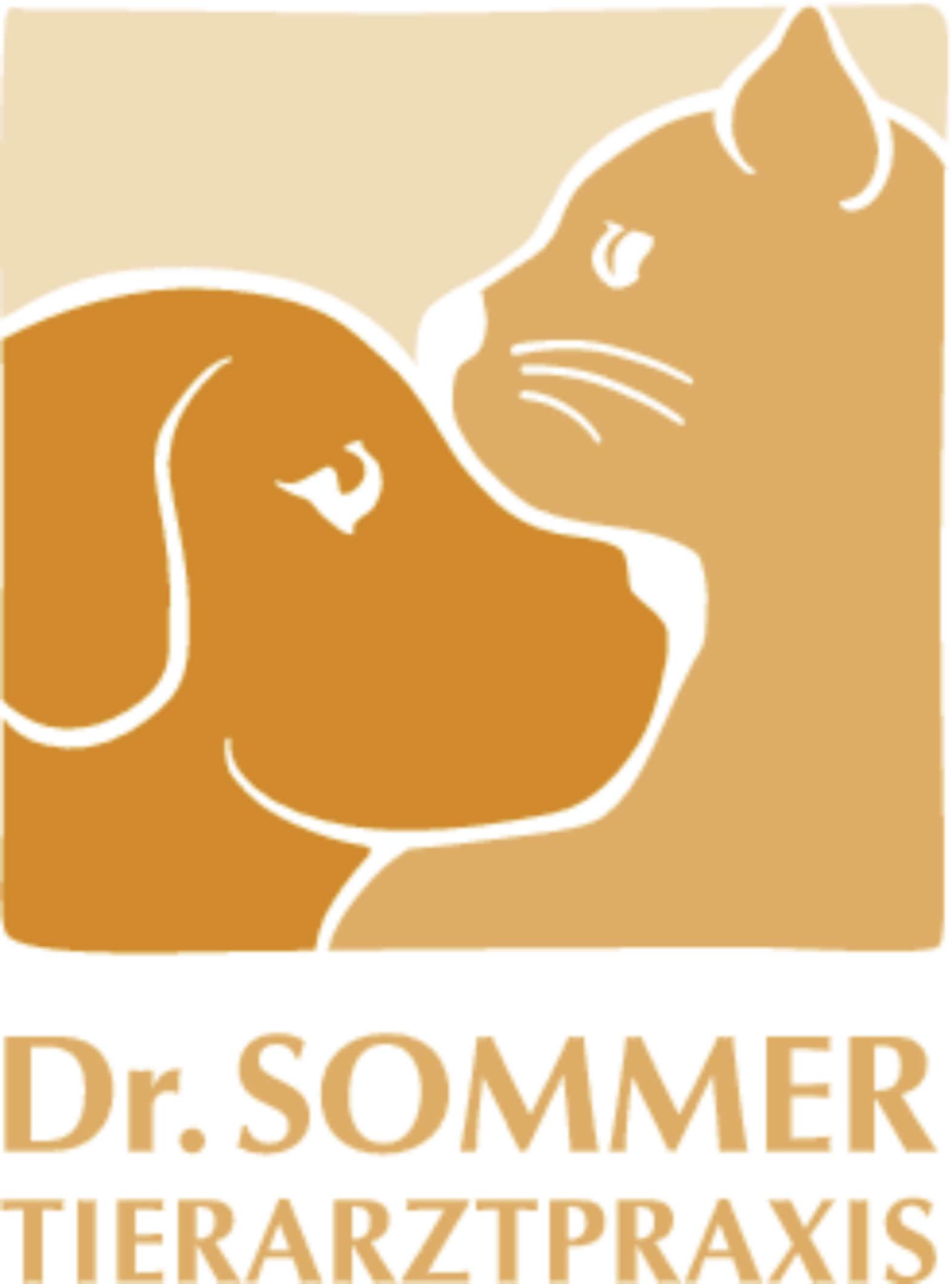 Nager Tierarzt Dr Med Vet Klaus Sommer Tierarztpraxis Munchen